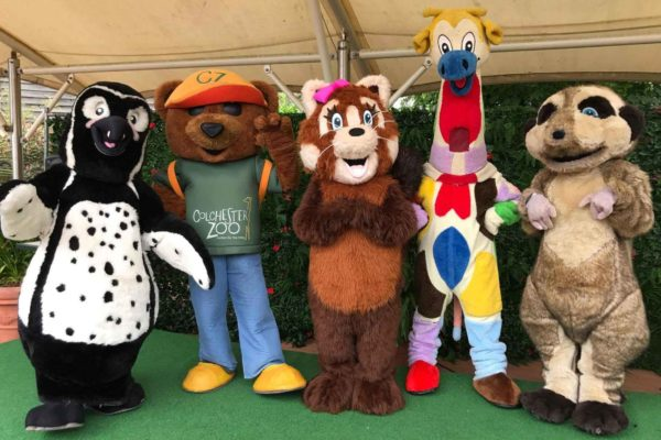 Colchester Zoo Character Breakfast