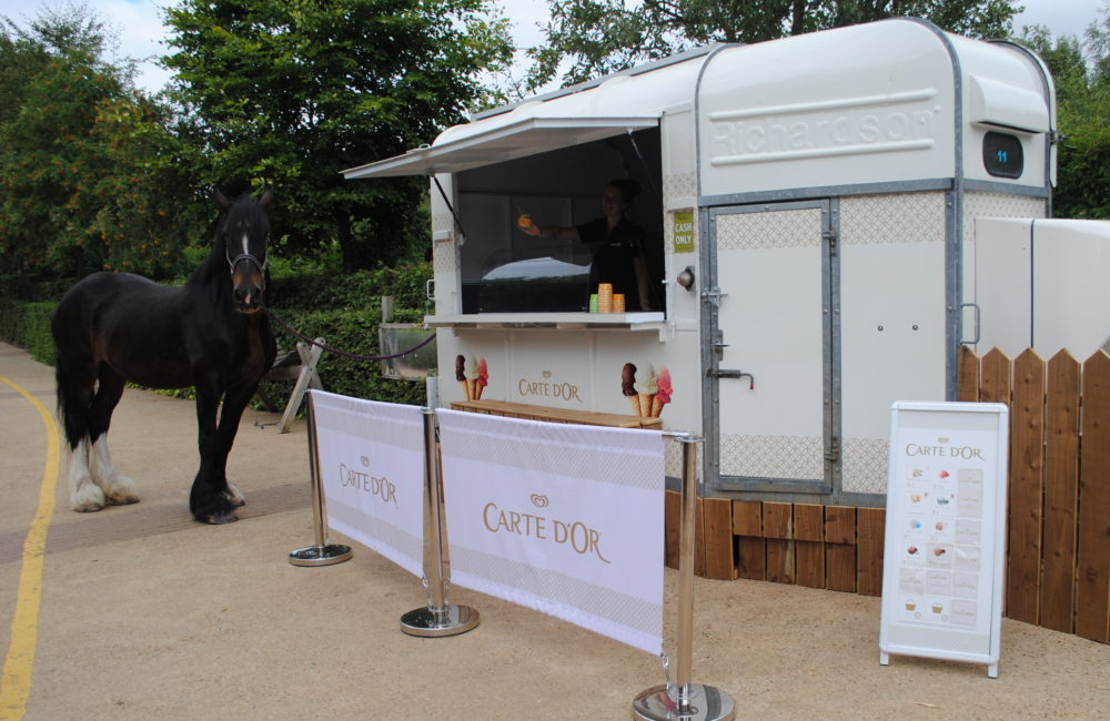 Converted horse box selling ice cream with shire horse