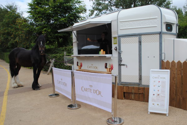 The Horse Box