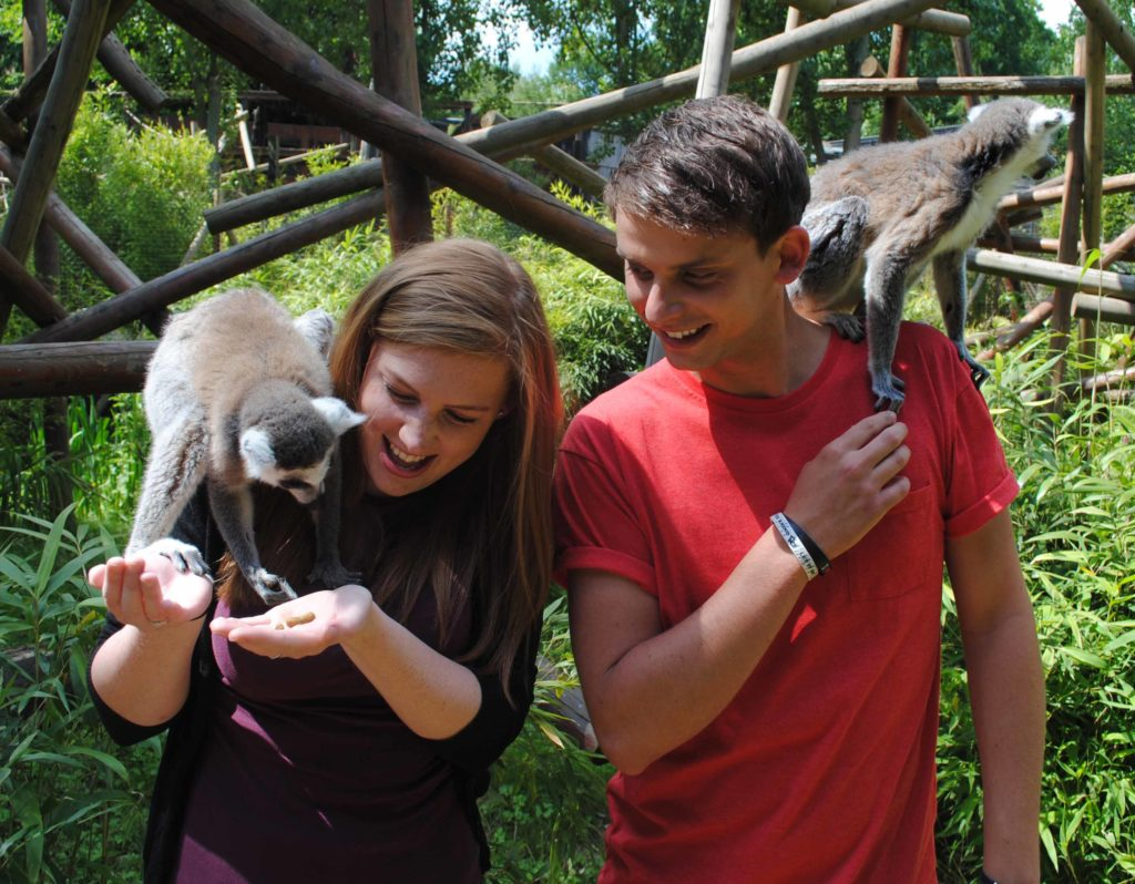 Man and woman with lemurs on their shoulders