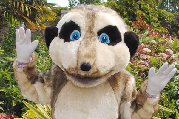 Milo the meerkat mascot