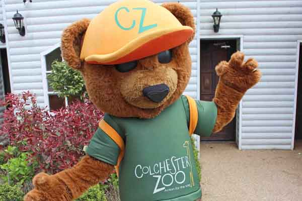 Zoo Crew Party – Sonny the Bear