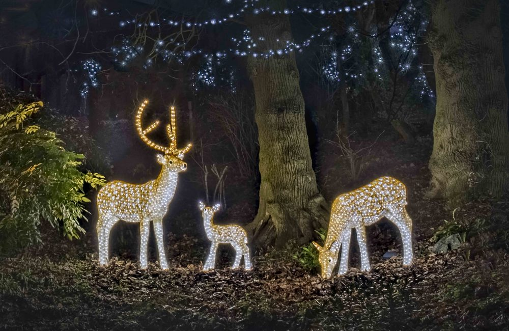 Family of deer shaped festive lights