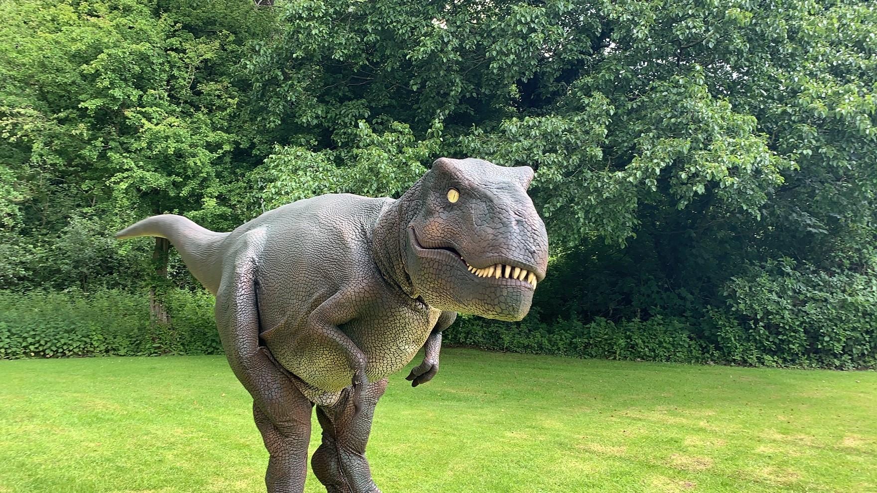 Dino Day