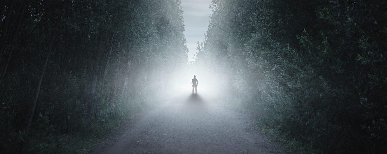 Trail of Terror T&Cs