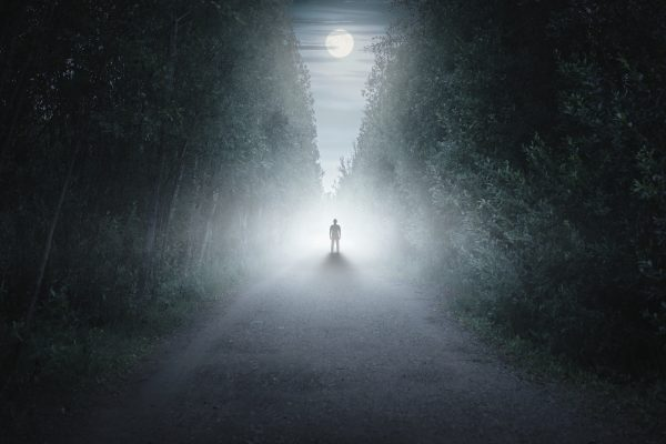 The Trail of Terror – 29th October